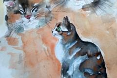 Katzen IAquarell  40x50