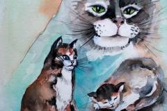Katzen Aquarell  50x 60